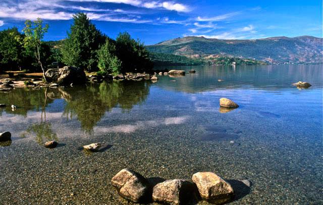 Parque Natural del Lago de Sanabria Perros del Alta Sanabria